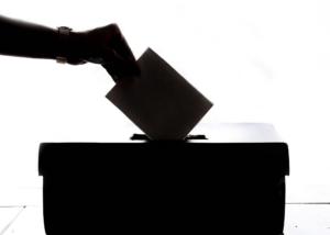 Legislative Effectiveness at Primaries
